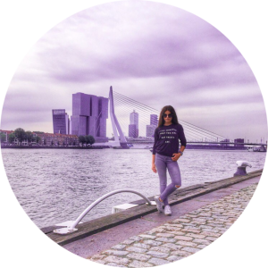 Роттердам. Мост Эразма